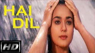 Hai Dil -Dulhan Dilwale Ki | Venkatesh & Preity Zinta | Kumar Sanu & Anuradha Paudwal