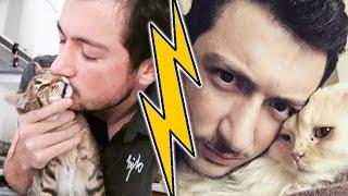 LOKUM vs NİMET ! (Kedilerimi Tanıştırdım)