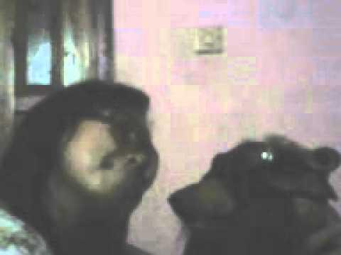 aksi wanita gila bersama anjing nya