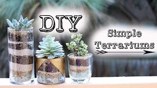 ➳ DIY: Simple Succulent Terrariums & Gold Jars