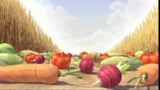 Funny Animal animation video short film