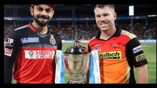 IPL 2016 Final Match Full Highlights   RCB Vs SRH   Warner & Cutting Helps SRH Win Title #Images