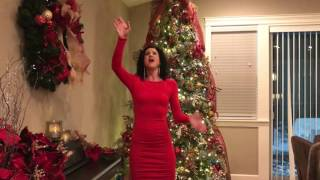 i'm singing the beautiful Christmas song