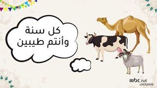 عيد سعيد مع اضاحي العيد .. شوية حاجات لازم تعرفوها قبل ماتضحوا