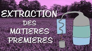 Les techniques d'EXTRACTION en parfumerie - Matières premières (2/2)