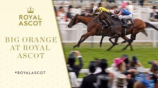 Royal Ascot 2017: Big Orange edges thrilling Gold Cup finale