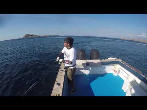 KOMODO POPPING 2017 WITH TOP INDONESIA HOLIDAYS & ADHEK SPORT FISHING #1