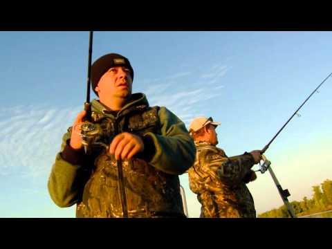 рыбалка на хищника в саратове