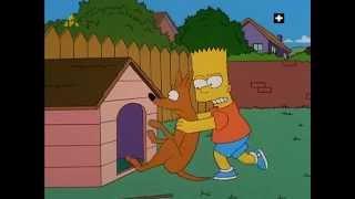Ajde đemo evo ti-Simpsoni (Ciganski Simpsonovi)