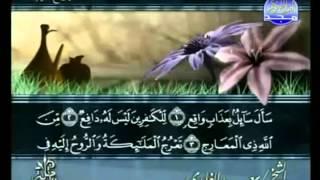 القرآن الكريم - الجزء التاسع والعشرون - تلاوة سعد الغامدي - 29