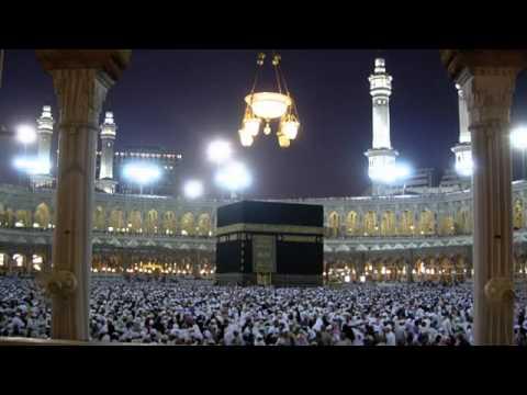 القرآن الكريم : سورة البقرة Quran Translation -Ghamdi: Al-Baqarah : 2