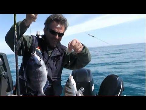 squid ΚΑΘΕΤΗ ΚΑΛΑΜΑΡΙΑ ΣΚΑΘΑΡΙΑ sotos fishing.wmv
