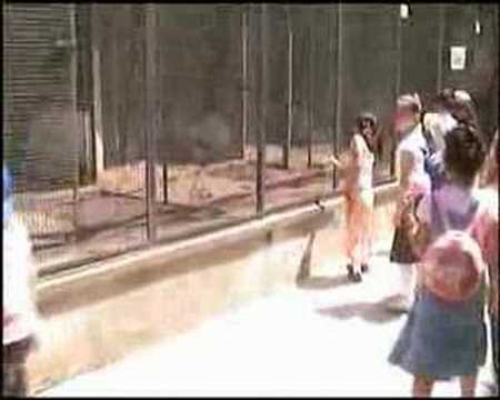darıca hayvanat bahçesi 2 bölüm