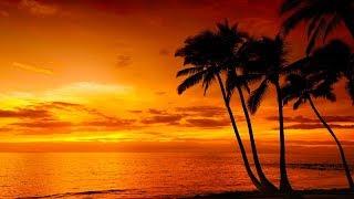Relaxing Sleep Music, Calm Music, Soft Music,  Instrumental Music, Sleep Meditation, 8 Hours, ☯3271