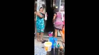 Singepur bathing