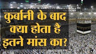 Haj में Qurban होने वाले इतने जानवर कहां से आते हैं और कहां चले जाते हैं   Eid al-Adha   Bakrid