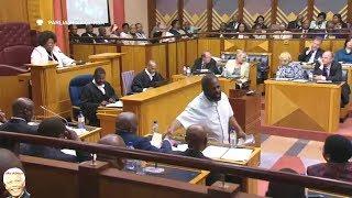 Willie Madisha Entertains Parliament Again