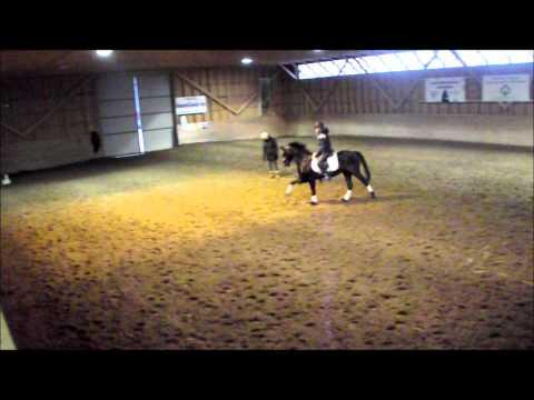 Dressyrträning för Carolina Westerlund Moonlight s Pascal 18.12.2011