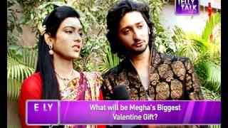 How Megha and Mohan of 'Na Bole Tum Na Maine Kuch Kaha' celebrated Valentine's Day.!!