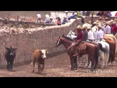 Resumen Coleadero Estancia de Guadalupe 2015 Sombrerete Zac.