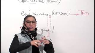 XXI OAB   Etica e Estatuto da OAB   Andréa Abritta   Aula 01   Dos Direitos do Advogado   Parte 1