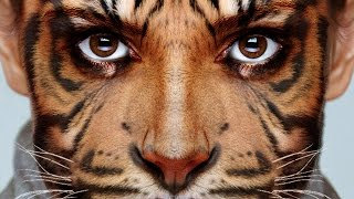 Photoshop Tutorial: How to Transform Yourself into an Animal!