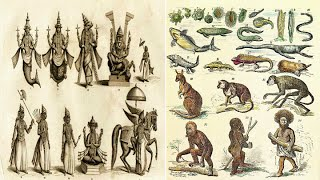 Hinduism - 10 Avatars of Vishnu and Darwin's Theory of Evolution - Parallels