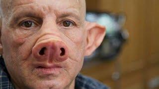Scientists Create Pig-Human Hybrid - Chimera Explained