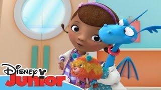 Dottoressa Peluche - Ospedale dei giocattoli - I cuccioli terapeutici - Dall