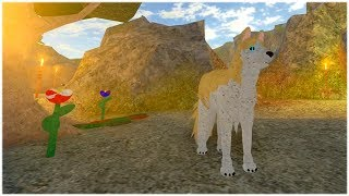 A WOLVES LIFE 2 SHOWCASE IN ROBLOX   RADIOJH GAMES