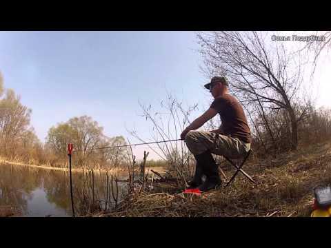 ловля на речке рось