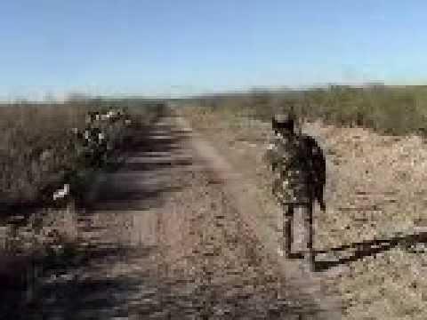 Rancho Las Lomas Caceria Jabali