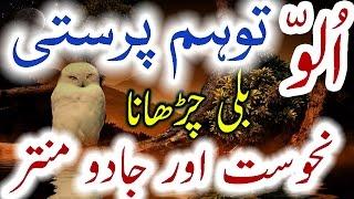 Ullu Aur Toham Parasti Jadu Mantar Aur Nahusat Owl Superstition Urdu Hindi