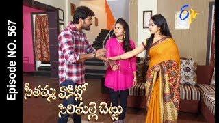 Seethamma Vakitlo Sirimalle Chettu   28th June 2017   Full Episode No 567   ETV Telugu