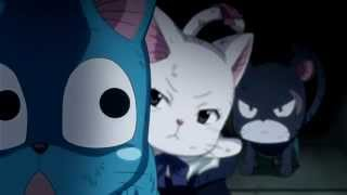 Did you touch it......Fairy Tail Cats