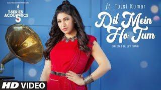 Dil Mein Ho Tum   T-Series Acoustics   TULSI KUMAR    WHY CHEAT INDIA    Bollywood Songs