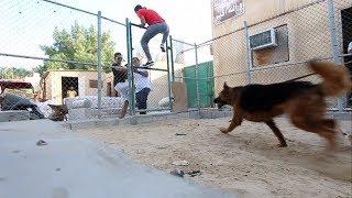 كلب هجم علي | مقلب شرس !! فلوق#51