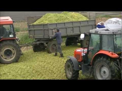 Akcja Kukurydzy 2011 Zetor 5340 7340 New Holland Massey Ferguson
