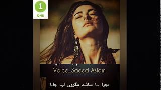 Punjabi Poetry lyrics | Best video for whatsapp status |Saeed Aslam | Whatsapp Status 2019