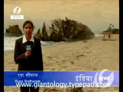 Monstruo Gigante desconocido encontrado despues de tsunami