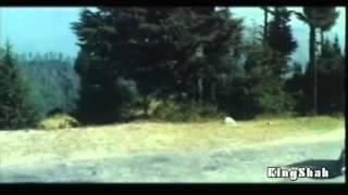 Chehra Kya Dekhte Ho *HD* Kumar Sanu & Asha Bhosle  (Salaami) Romantic Hindi Song