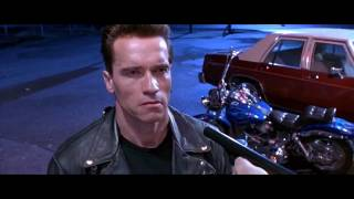 The Terminator - Fat Boy - Harley-Davidson