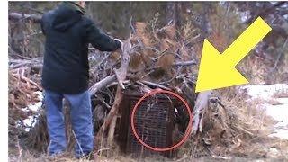 When This Man Went To Check On His Fox Trap, He Found A Ferocious Predator Caught Inside