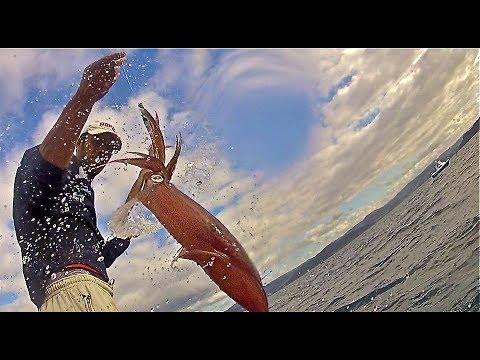 Juan Poper. Pesca del Calamar en Galicia