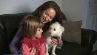'Thrown Away' Dog Saves Little Girl's Life