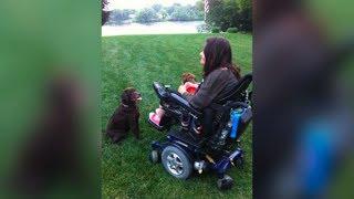 Girl's Best Friend: Champlin Park Grad seeks Help for Service Dog