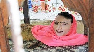 इंसान का सिर, लोमड़ी की बॉडी, जानें इस पाकिस्तानी