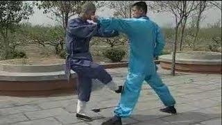 Shaolin kung fu combat: 20 methods