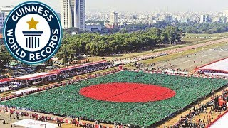 গিনেস বুকের যেসব রেকর্ড গুলো বাংলাদেশের দখলে || Guinness World Records of Bangladesh