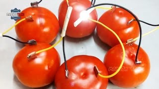 How to Produce Electricity using Tomato   Tomato Battery Making at Home